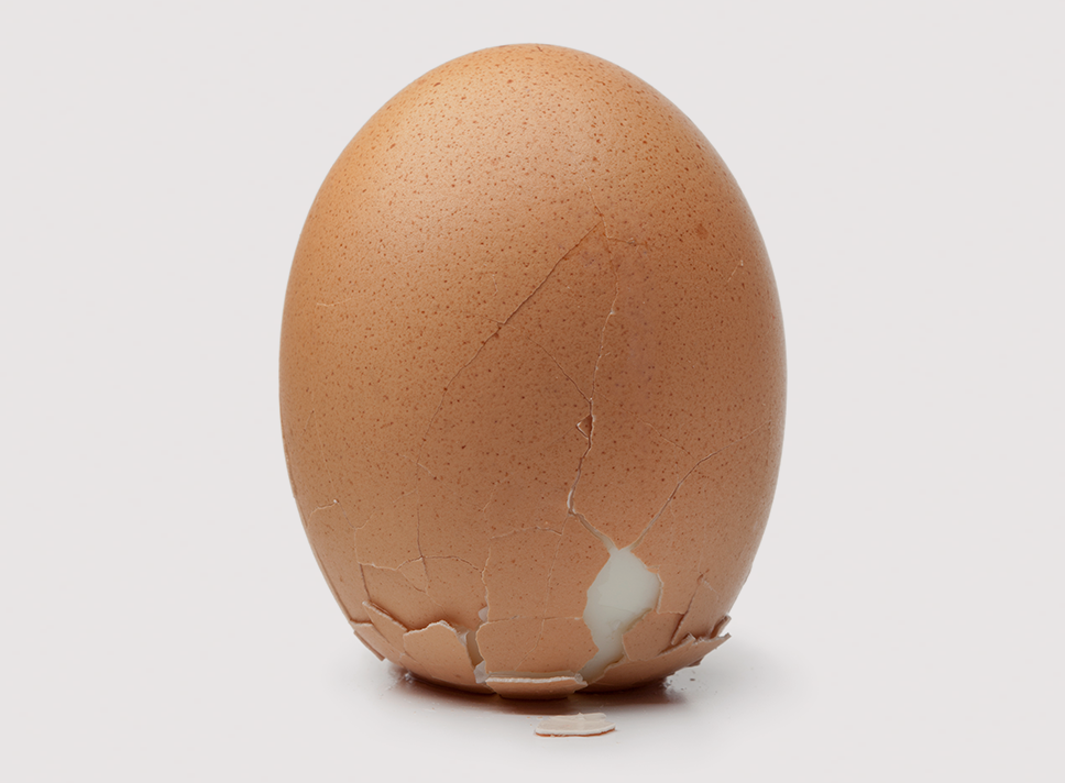 Egg_cropped_2